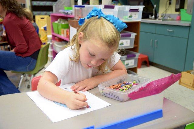 VV-SH-KindergartenEnrollment.jpg