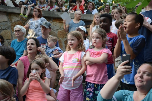 Library at the Forest Summer Reading Kickoff 2018 - 8.jpg
