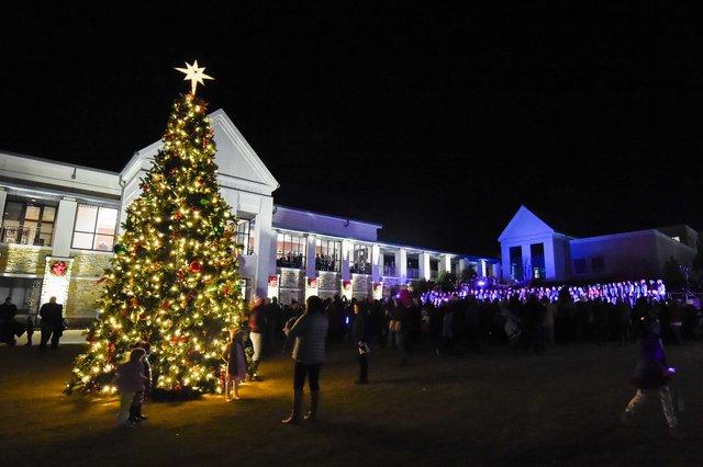 VV PHOTO Tree Lighting-1.jpg
