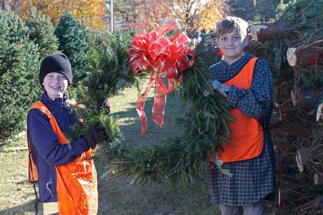 OTM-Scout-Tree-Sales-2012--10-10.jpg