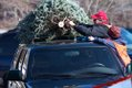 OTM-Scout-Tree-Sales-2010--37-15.jpg