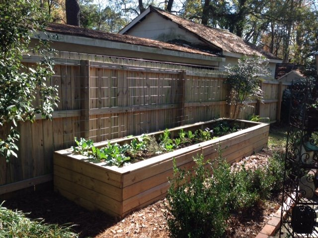 Vhcsf Awards 2014 15 Grants Including One For A Community Garden