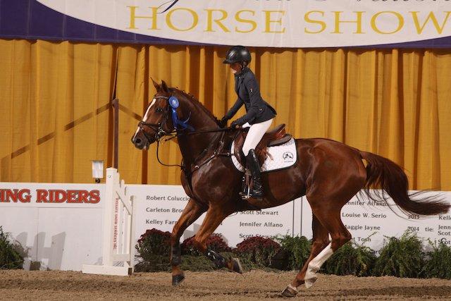 VV COMM EquestrianChampion.JPG
