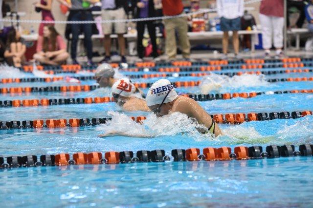 VV SPORTS SwimDive-11.jpg