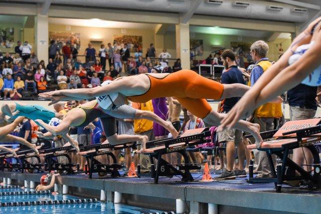 VV SPORTS SwimDive-16.jpg